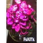 Đèn trồng cây cảnh cây hoa để bàn